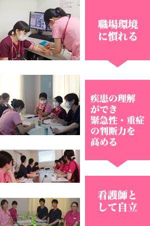新人看護師教育体制・年間教育スケジュール